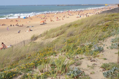Camping Anglet Plage